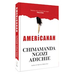 Americanah1 7 great novels by African women writers