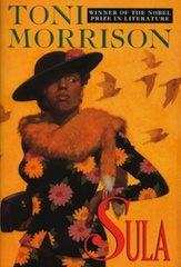 sula one sheet 7 great novels by African women writers
